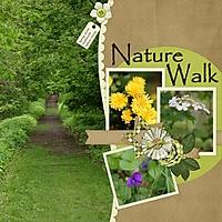 Nature_Walk_Copy_.jpg