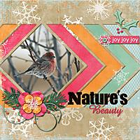 Natures-Beauty.jpg
