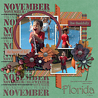 November-in-Florida-jencdesigns_manymemories_tp3-copy.jpg
