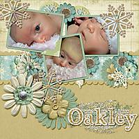 Oakley2.jpg