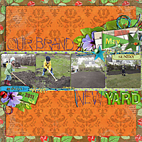 Our-Brand-New-Yard-May-2011.jpg