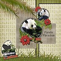 Panda_paradise_web.jpg