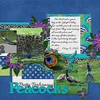 Peacocks_.jpg