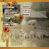 Pumpkin-Farm-2.jpg