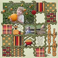Pumpkin_Patch_2007_Web.jpg
