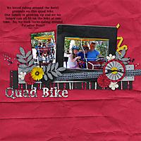 Quadbike_web.jpg