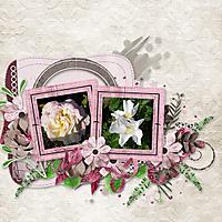 Roses_08.jpg