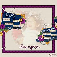 Sawyer_AAM600.jpg