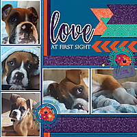 September-Puppy-Love2WEB.jpg