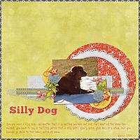 Silly-Dog.jpg
