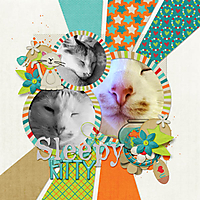 Sleepy_Kitty.jpg