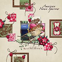 Sparrow-4-Web.jpg