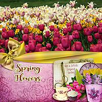 Spring-Glowers-2011.jpg