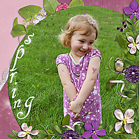 Spring_copy1.jpg