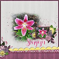 Stargazer-Bouquet.jpg