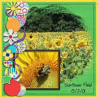Sunflower_Field.jpg