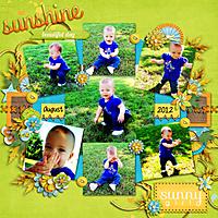 Sunshine14.jpg