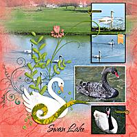 Swan-Lake-LKD-SideStep-T2-copy.jpg