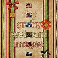 Tiny_Grainy_Webcam_Images.jpg