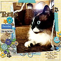 Tonks-for-web.jpg