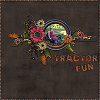 Tractor-Fun.jpg