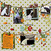 WEB-2011-Pilli-IWannaSeeToo.jpg