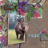 WEPA-2010-cbjFreakyDeaky.jpg
