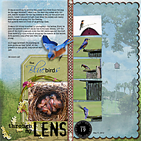 Week-19-The-BluebirdsNS_PixiePlate_178-copy.jpg
