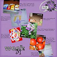 Week_311.jpg