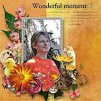 Wonderful_Momen_st.jpg