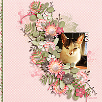bloomin_600.jpg
