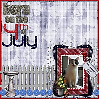 born_on_the_4th_of_july.jpg