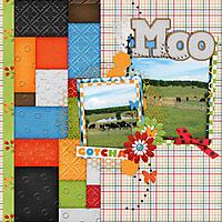cap_mosaictemps3-3.jpg