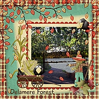 delmere_forest.jpg