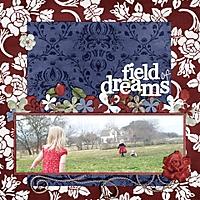 fieldofdreamssm.jpg