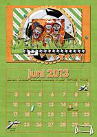 juni2013-web.jpg