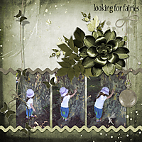 looking-for-fairies.jpg