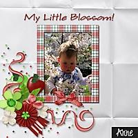my_little_blossom-001.jpg