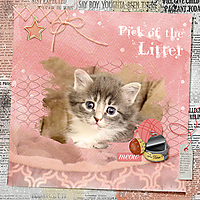 pickofthelitter_web.jpg
