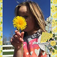 ponytails_StandTogether_ShowOff2_-web.jpg