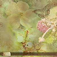scrapbook_2011-08-Flora-of-.jpg