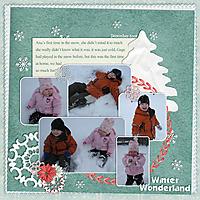 snowmuchfun_copysm.jpg