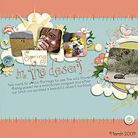 spring_in_the_desert_copy.jpg