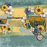 sunflowers_600_x_600_.jpg