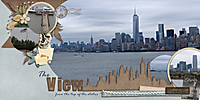 the-view-nyc-from-lib.jpg