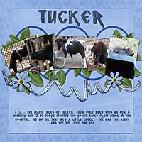 tucker1preview_220.jpg