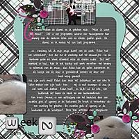 week_2-4.jpg