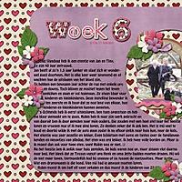 week_6-1.jpg
