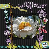 wildflowers_copy.jpg