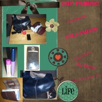 my_purse1.jpg